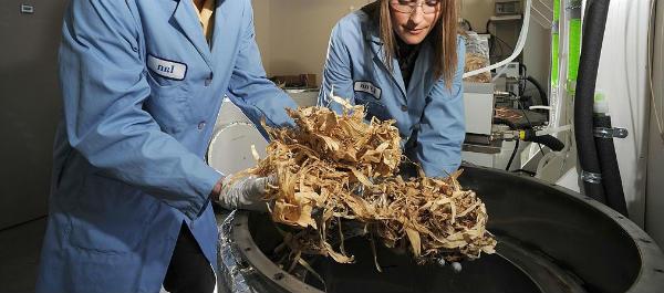que es la biomasa